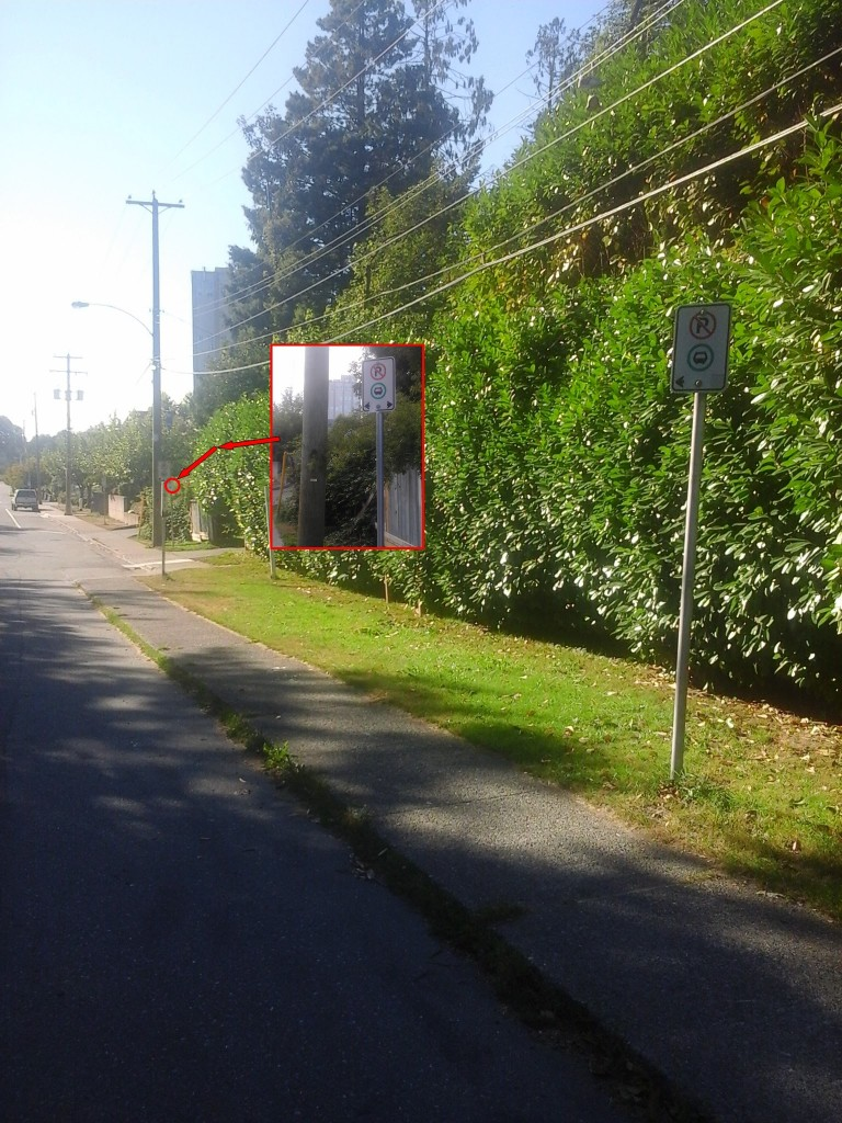 Three_Bus_Stop_Signs